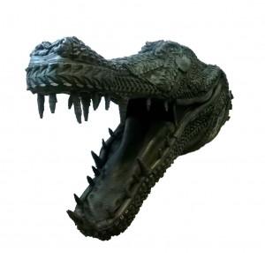 Alligator 6